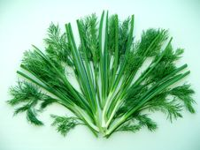 Free Fan Of Green Onion And Dill Royalty Free Stock Photo - 5503265