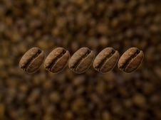 Free Five Beans Stock Images - 5505774