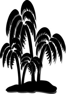 Free Coconut Tree Royalty Free Stock Photo - 5506435