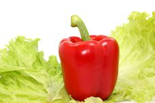 Free Red Pepper And Verdure Stock Images - 5506544