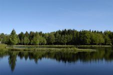 Free Sunny Lake With Trees Reflecting Royalty Free Stock Images - 5506579