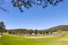 Free A Lush Arizona Golf Course Stock Photo - 5508400