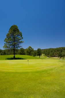 Free Gorgeous Golf Course In Arizona Royalty Free Stock Images - 5508729