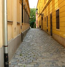 Free Cobblestone Narrow Street Royalty Free Stock Photography - 5509787