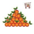 Free Shopping Basket With Fruit Stock Photos - 5510583