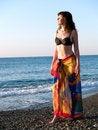 Free Beautiful Lady In Bikini On Beach Sunset Royalty Free Stock Photography - 5515327
