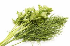 Free Dill And Parsley For A Salad Royalty Free Stock Photography - 5511797