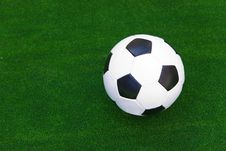 Free Ball In The Green Grass Stock Photo - 5513240
