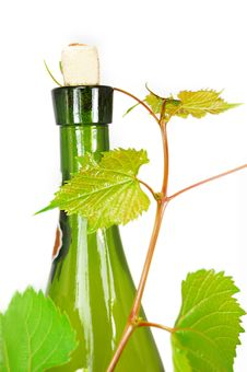Free Wine Stock Photography - 5514632