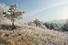Free Frosty Hills Royalty Free Stock Photography - 5515337
