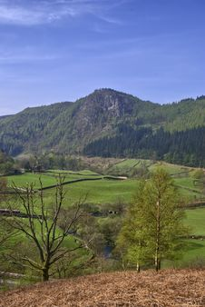 Free View Of Raven Crag Royalty Free Stock Images - 5515539