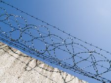 Free Barbed Wire Stock Image - 5515791