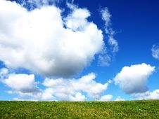Free Green Grass And Cludy Sky Royalty Free Stock Photo - 5516405