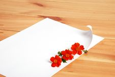 Free Letter With Flowers Stock Photography - 5516842