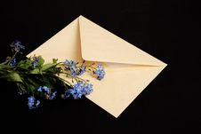 Free Envelope With Flowers Stock Photography - 5516932