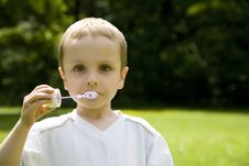 Free Blowing Bubbles Stock Images - 5518104