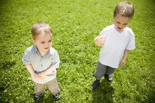 Free Two Brothers On The Meadow Royalty Free Stock Image - 5518316