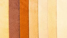 Free Leather 1 Stock Photography - 5518352
