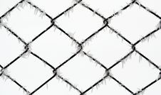 Free Frost On Wire Fence Royalty Free Stock Images - 5519229