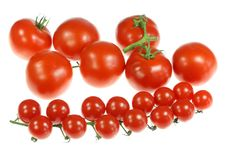 Free Tomatoes On White. Stock Images - 5519644