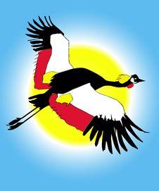 Free Bird Illustration Stock Photo - 5519760