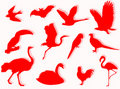 Free Birds Silhouette Stock Image - 5520151