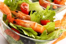 Free Shrimp Salad Stock Photos - 5521973