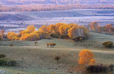 Free Autumn Royalty Free Stock Image - 5522516