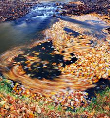Free Autumn Water Royalty Free Stock Photography - 5522767