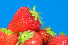 Free Fresh Strawberries Stock Images - 5523734
