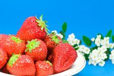 Free Strawberries And Flowers Royalty Free Stock Image - 5523796