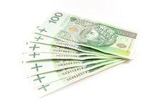Many Polish Money Royalty Free Stock Photo