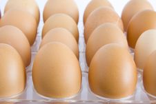 Free Chicken Eggs Stock Image - 5528051