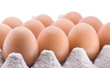 Free Eggs Royalty Free Stock Photo - 5529145