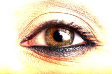 Macro Of Eye Stock Photo