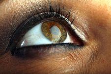 Macro Of Eye Royalty Free Stock Photo
