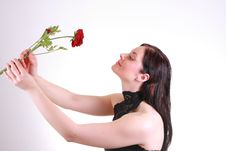 Free Woman With Rose Royalty Free Stock Photography - 5530747