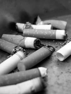 Free Cigarette Butts In Ashtray Stock Images - 5530874