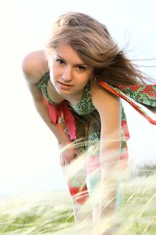 Free Summer Beauty Royalty Free Stock Photos - 5531298