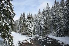Free Poland, Tatra Stock Image - 5534201
