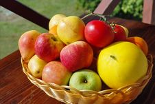 Colorful Garden Fruits In Basket. Stock Image
