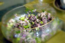 Free Fish Salad Royalty Free Stock Photo - 5534905