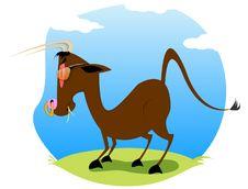 Free Bull Stock Image - 5535411