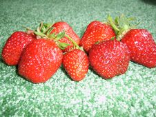 Free Sweet Strawberry Stock Image - 5535441
