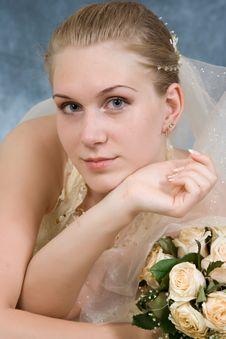 Wedding Portrait Royalty Free Stock Photography
