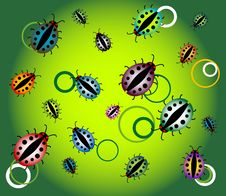 Free Ladybirds And Circles Stock Image - 5537711