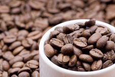 Free Coffee Royalty Free Stock Photos - 5540308