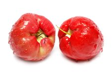 Free Water Apples Stock Image - 5540391