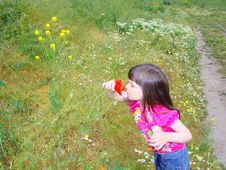 Free Little Girl On A Glade. Royalty Free Stock Photography - 5540697