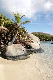 Free Island Oasis Stock Photo - 5543050